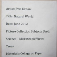 Evie Elman's New Collage in the Visual Arts Library