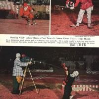 Circus - Clowns